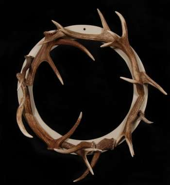 Stag Antler Wreath